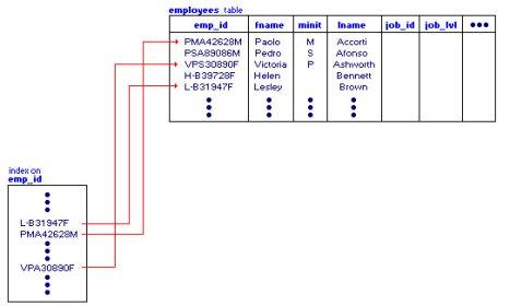 ilustrasi-index.jpg